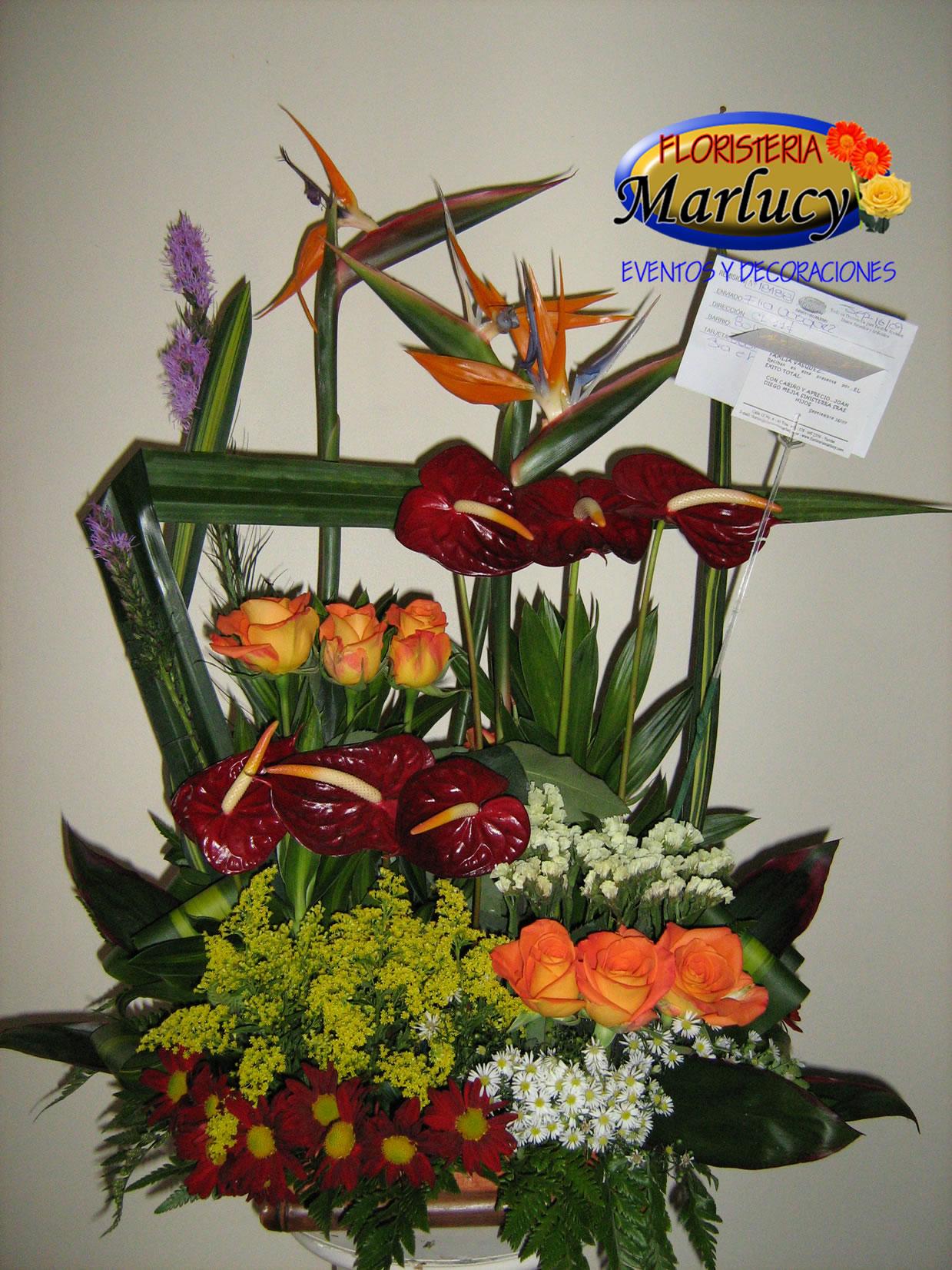 Arreglos Florales Dia Madre 2011 Foto 0003jpg